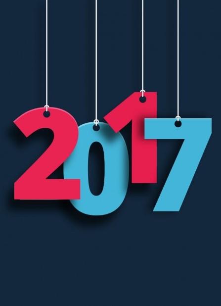 2017 Plan Sales
